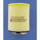 Air Filter - 1011-1458
