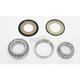 Steering Stem Bearing Kit - PWSSK-H03-021