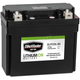 Lithium Ion Battery - DLFP-20L-BS