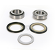 Steering Stem Bearing Kit - 22-1066