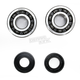 Crank Bearing and Seal Kit - 23.CBS22005