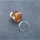 Chrome Signal Lens Trim - DS-720092