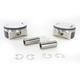 Piston Kit - 3.88 in. Bore/9.6:1 Ratio - 0911-0022