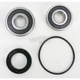 Rear Wheel Bearing and Seal Kit - PWRWS-H70-000