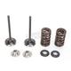 Intake Valve Kit - 0926-2439