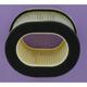 Air Filter - HFA4902