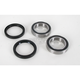 Rear Wheel Bearing Kit - PWRWK-S26-400