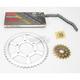 530GXW Chain and Sprocket Kit - 2127-000W