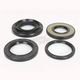 Rear Differential Seal Kit - 0935-0818