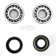 Crank Bearing and Seal Kit - 23.CBS21082