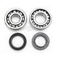 Crank Bearing Kit - 0924-0215