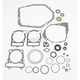 Complete Gasket Set with Oil Seals - M811813