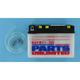 Standard 6-Volt Battery - R6YB112D