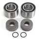 Rear Wheel Bearing Kit - 301-0262