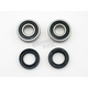Wheel Bearing and Seal Kit - A251369