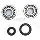 Crank Bearing and Seal Kit - 23.CBS33089
