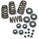 Valve Spring Kit - 90-00050