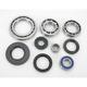 Rear ATV Differential Bearing - 1205-0047
