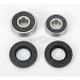 Front Wheel Bearing Kit - PWFWK-K11-008