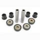 Rear Suspension Knuckle Kit - 0430-0619