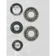 Crank Bearing/Seal Kit - A24-1022