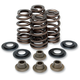High-Performance Ovate Wire Beehive Valve Spring Kit - 20-20650
