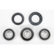 Rear Wheel Bearing Kit - PWRW-KS17-400