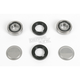 Swingarm Pivot Bearing Kit - 1302-0235