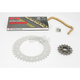 GB520XSO Chain and Sprocket Kit - 1107-008RG