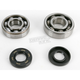 Main Bearing and Seal Kit - K237