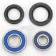 Front Wheel Bearing Kit - A25-1083
