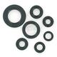 Oil Seal Kit - 0935-0466