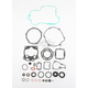 Complete Gasket Set with Oil Seals - M811425