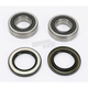Rear Wheel Bearing Kit - PWRWK-S10-000