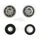 Crank Bearing Kit - 0924-0237