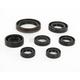 Oil Seal Kit - C3057OS