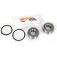 Steering Stem Bearing Kit - PWSSK-T02-000
