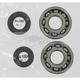 Crank Bearing/Seal Kit - A24-1009