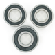Rear Wheel Bearing Kit - PWRWK-T06-000