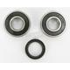 Rear Wheel Bearing Kit - PWRWK-S29-000