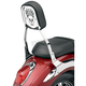 Skull Steel Backrest Insert for Cobra Square Shorty and Mini Backrests - 02-5062