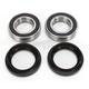 Rear Wheel Bearing Kit - 301-0387