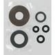 Oil Seal Set - 0935-0019