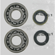 Crank Bearing/Seal Kit - A24-1045