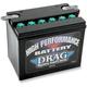 12-Volt Battery - 2113-0008