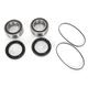 Rear Wheel Bearing Kit - PWRWK-Y79-000