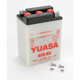 Conventional 6-Volt Battery - B386A