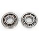 Crank Bearing Kit - 0924-0292