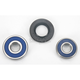 Rear Wheel Bearing Kit - 0215-0075