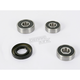 Rear Wheel Bearing Kit - PWRWK-K18-001